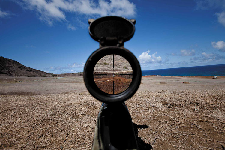 Best Mil Dot Scope Under $500: Top 5 Scopes Reviewed