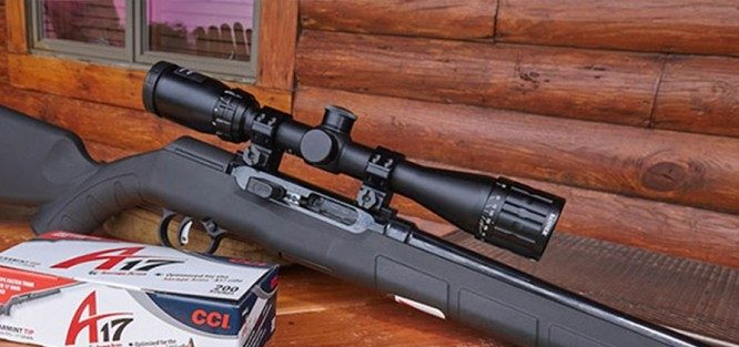 The 5 Best Scopes for HMR 17 Rifles (2019 Updated) Review
