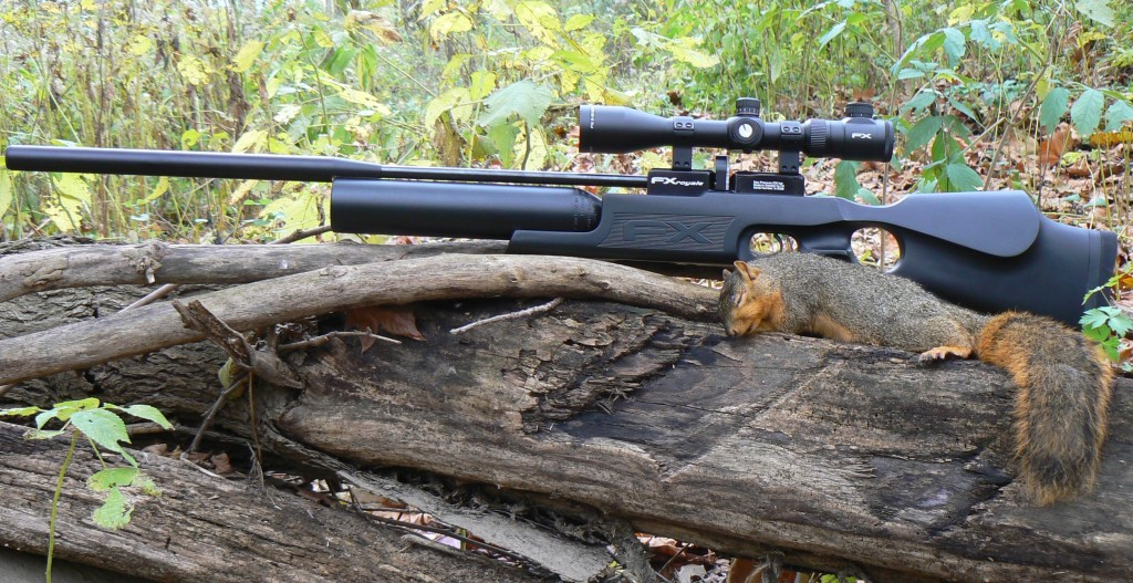 The 4 Best Air Rifles for Squirrel Hunting in 2019 [Reviewed]