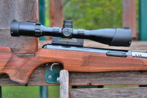 The 4 Best Air Rifles for Squirrel Hunting