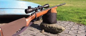 The 5 Best Scopes for HMR 17 Rifles