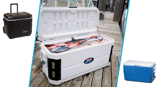 Review of the Best Coleman Coolers