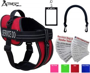 Activedogs Service Dog Vest Harness + Free Clip-on Bridge Handle + Free Clip-on ID Carrier + Free ADA Cards + Free Reflective Service Dog Patches