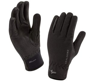 SEALSKINZ 100% Waterproof Men's Glove