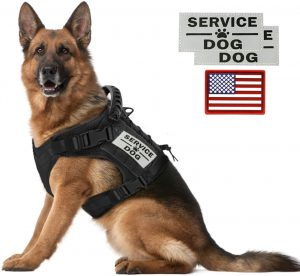 Tactical Service Dog Vests